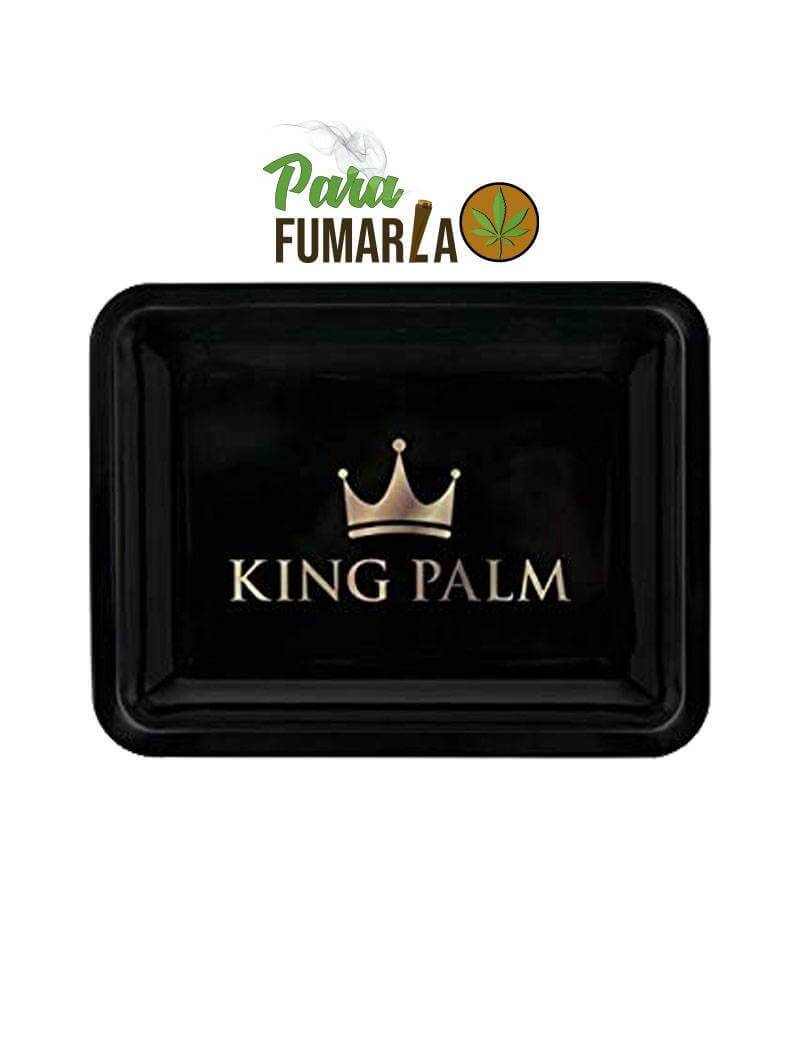 King Palm bandeja negra